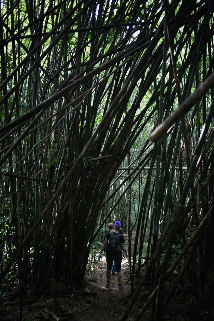 Laos15-ec_0187