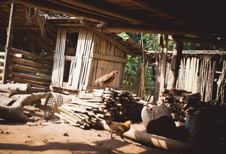Laos15 -ec_0469
